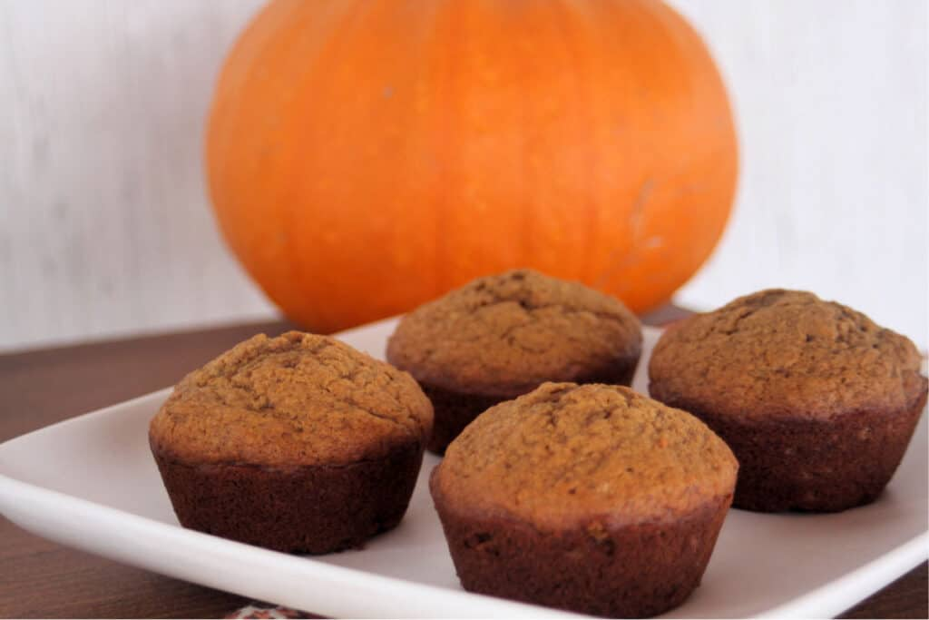 Pumpkin gingerbread muffins on a white plate with a pumpkin in the background