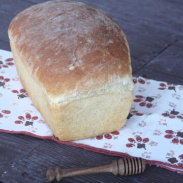 A loaf of honey oat bread on a brown and white napkin with a wooden honey dipper sitting in front of them.