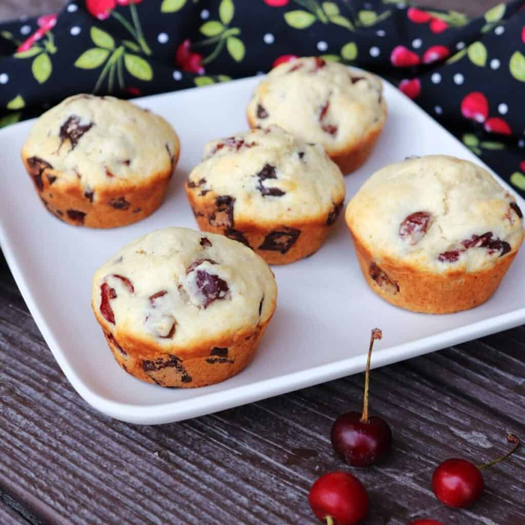 5 sour cherry chocolate chunk muffins on a square white plate with fresh cherries in front and a black cloth covered in a red cherry pattern behind.